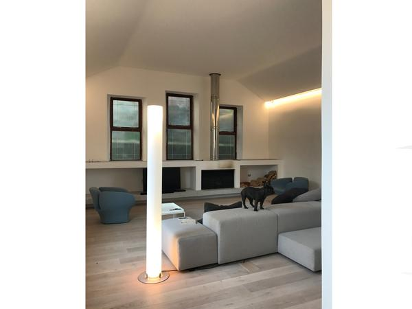 House and french bulldog sitter needed