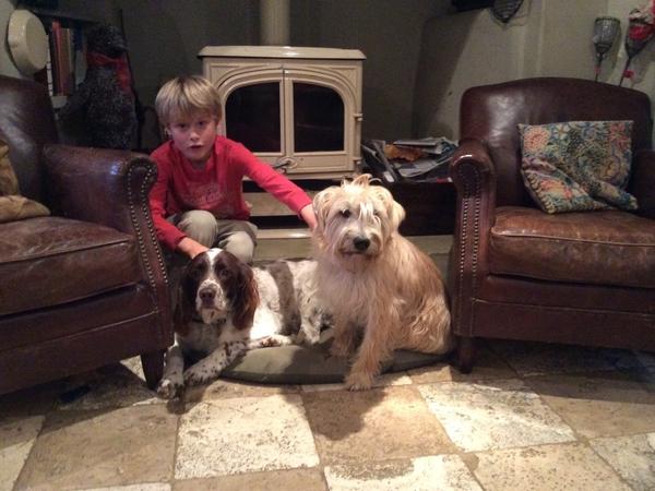 Cotswold dog sitting