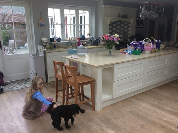 Family home in Woking, needs a dog, chicken and guinea pig sitter