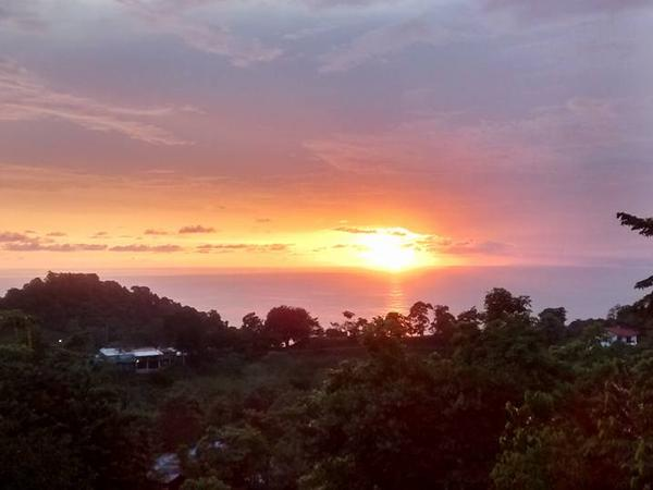 Housesitting assignment in Manuel Antonio, Costa Rica