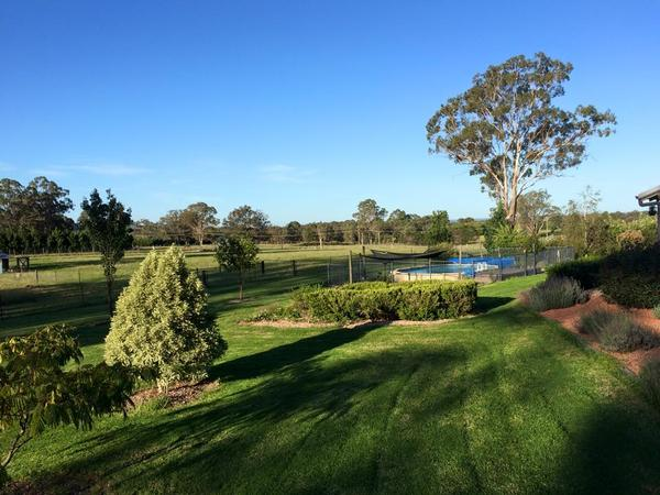 Housesitting assignment in Pheasants Nest, New South Wales, Australia