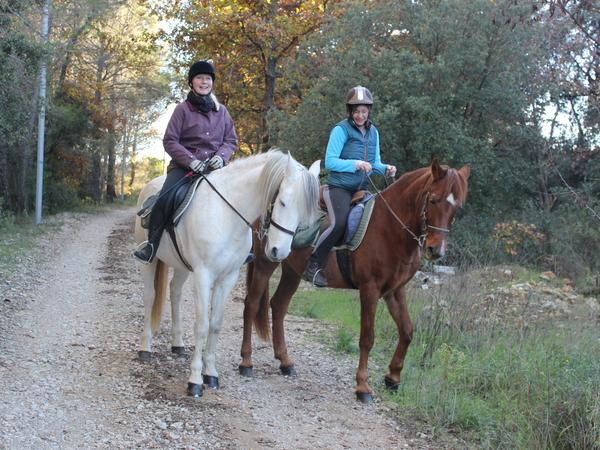 Home, Pool, Garden, 2 Easy Geldings that live out, and dog to exercise near a village, near vineyards.