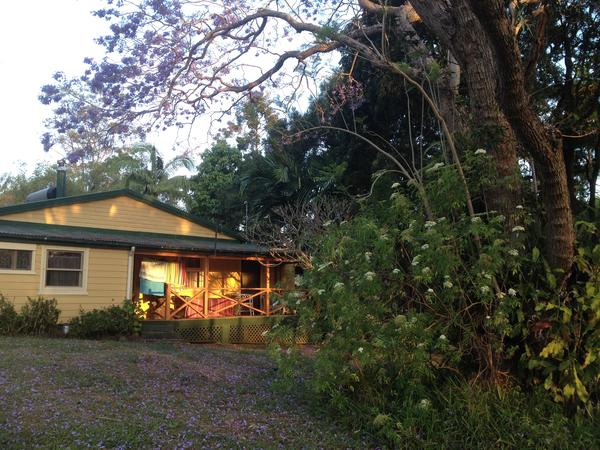 Housesitting assignment in Byron Bay, New South Wales, Australia
