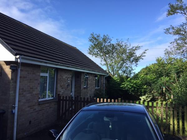 Housesitting assignment in Bishops Waltham, United Kingdom