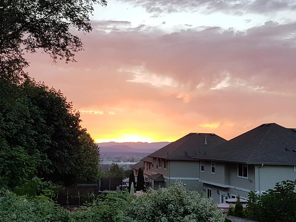 Housesitting assignment in Abbotsford, BC, Canada