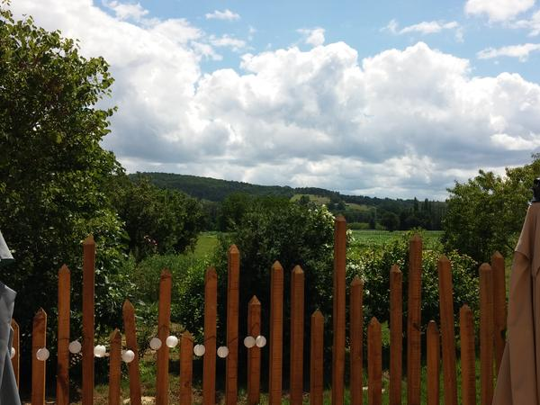 Housesitting assignment in Saint-Cyprien, France