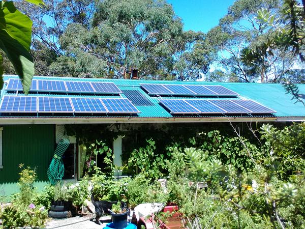 Housesitting assignment in Blackheath, NSW, Australia