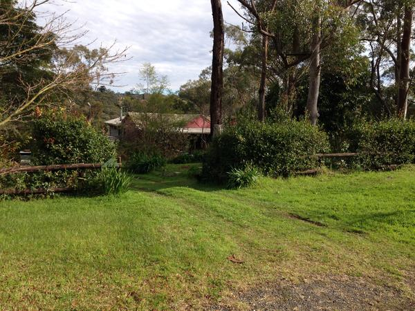 Housesitting assignment in Hazelbrook, New South Wales, Australia
