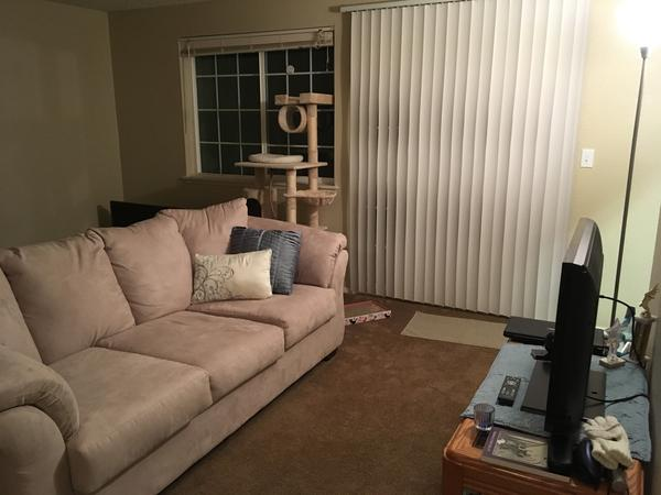 Housesitting assignment in University Place, Washington, United States