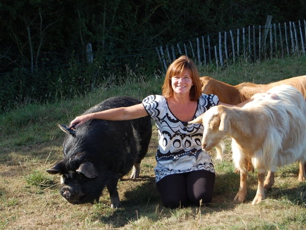 Home and Pet Sitter required for 3 dogs, 1 pig, 2 goats and a cockerel Feb-March 2016