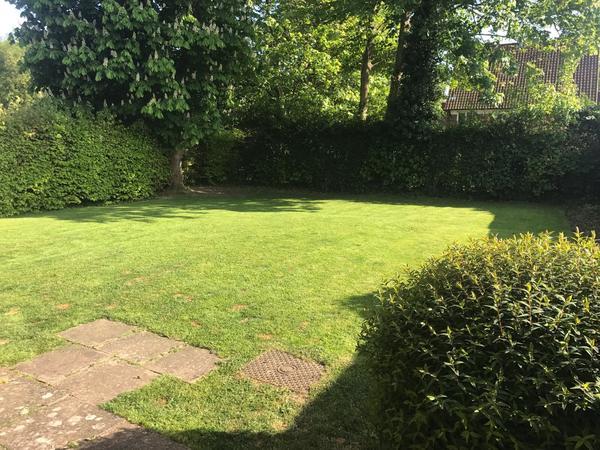 Housesitting assignment in Arborfield, United Kingdom