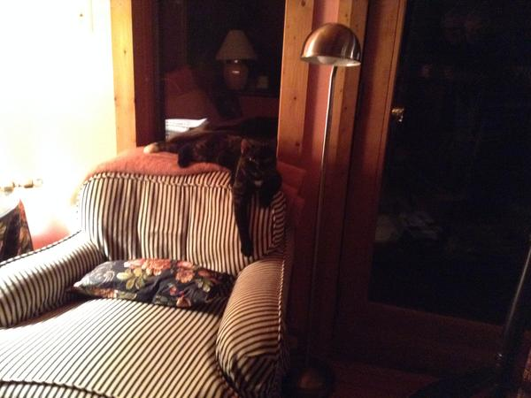 Housesitting assignment in Sperryville, Virginia, United States