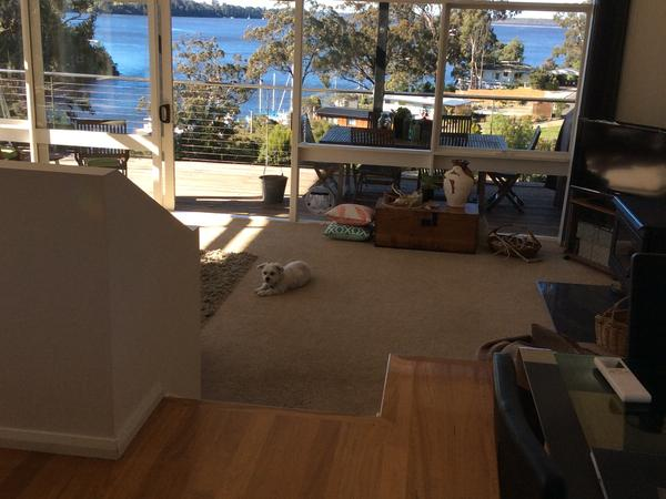 Housesitting assignment in Metung, VIC, Australia