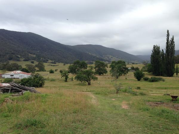 Housesitting assignment in Braidwood, New South Wales, Australia
