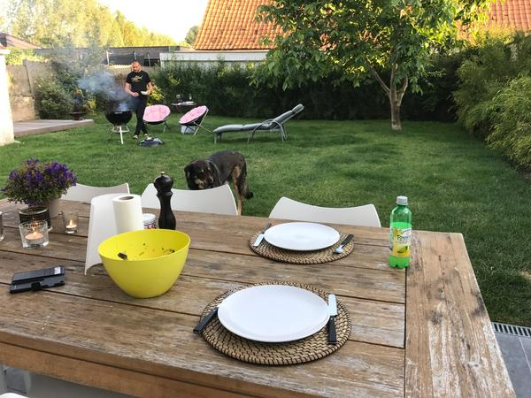 Housesitting assignment in Oudenaarde, Belgium