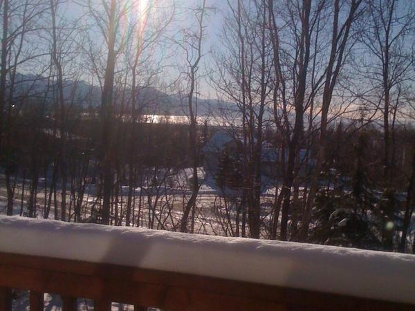 Housesitting assignment in Anchorage, AK, United States