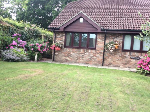 Housesitting assignment in West Chiltington, United Kingdom