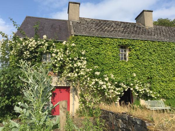 Country House requires Dog, Cat and Poultry House Sitter, in County Kilkenny.