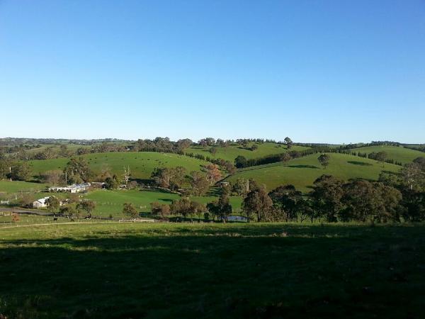 Housesitting assignment in Arthurs Creek, Victoria, Australia