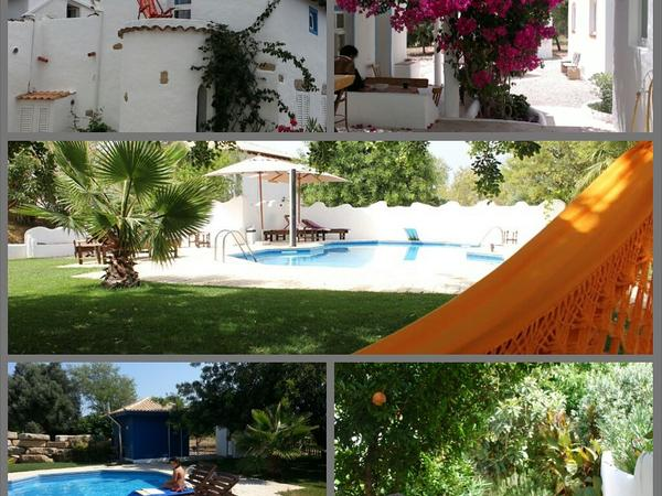 House sitter needed in Algarve