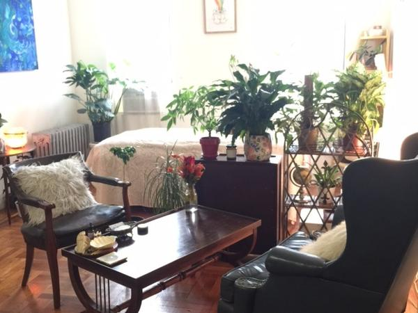 Housesitting assignment in Long Island City, New York, United States