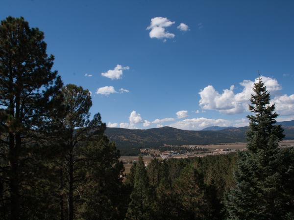 Housesitting assignment in Angel Fire, New Mexico, United States