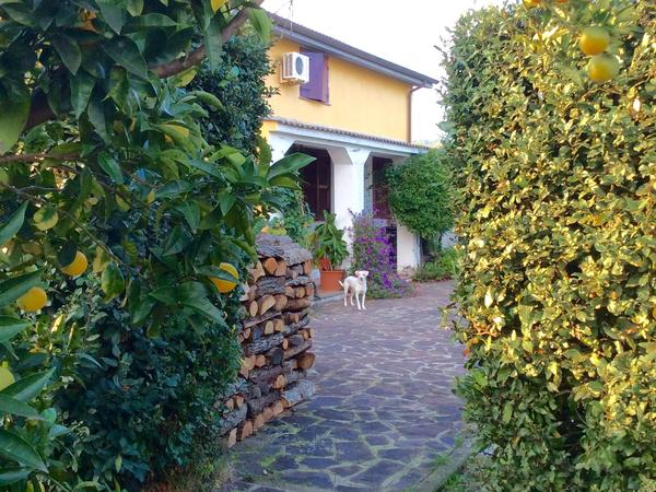 Housesitting assignment in Velletri, Italy
