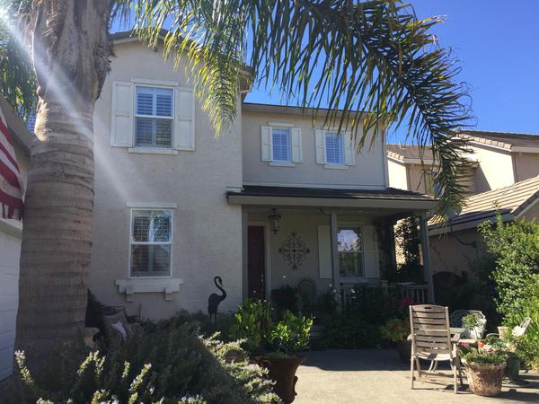 Housesitting assignment in Windsor, California, United States