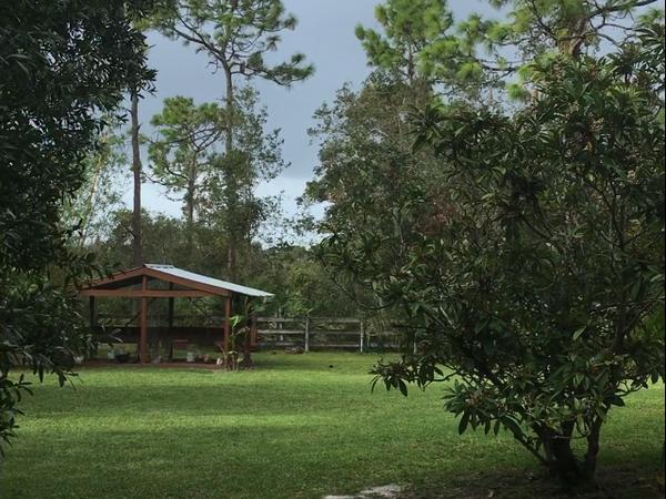 Housesitting assignment in Chuluota, Florida, United States