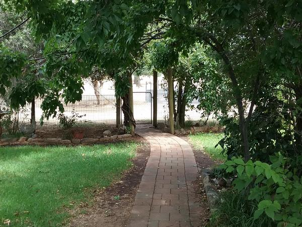 Housesitting assignment in Henty, New South Wales, Australia