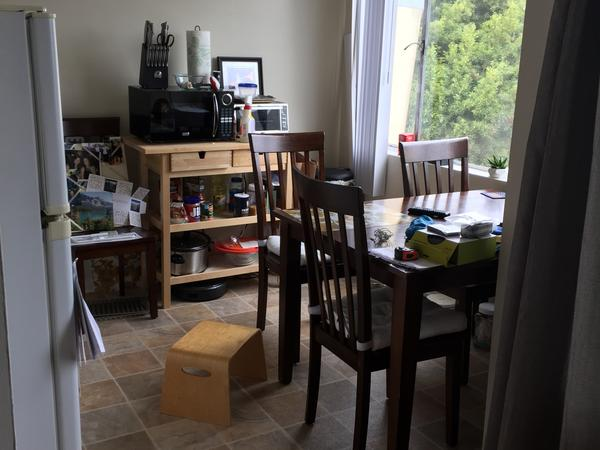 Housesitting assignment in San Francisco, California, United States