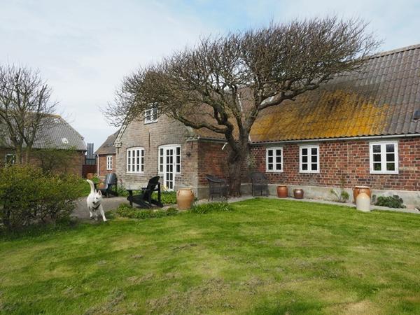 Housesitting assignment in Fjaltring, Denmark