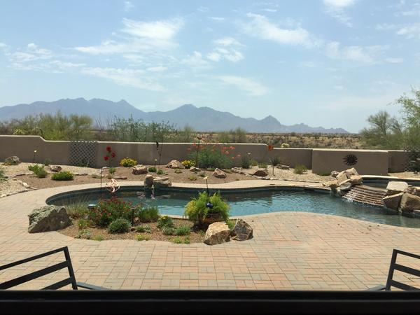 Housesitting assignment in Green Valley, Arizona, United States