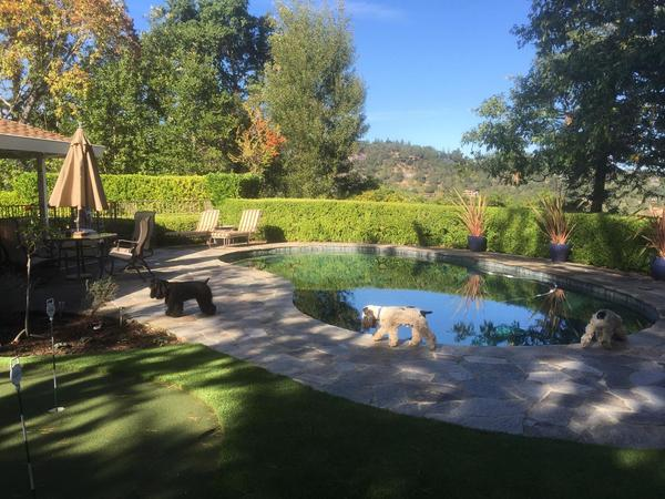 Housesitting assignment in Kentfield, California, United States