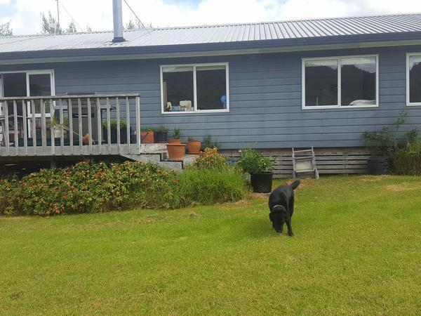 Housesitting assignment in Warkworth, New Zealand