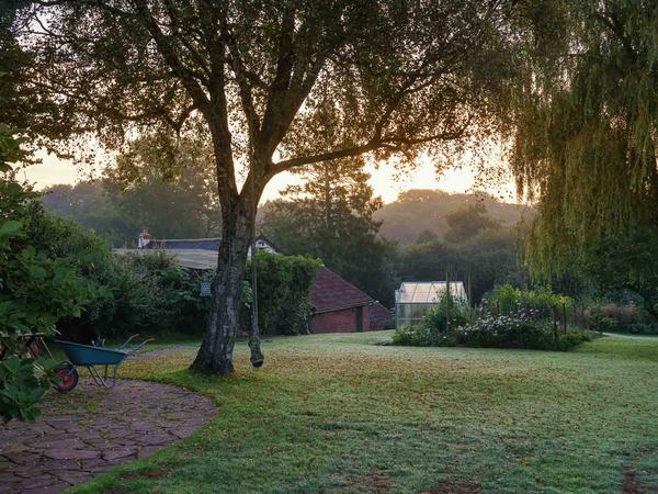 Dog sitter needed in the heart of the Devon countryside