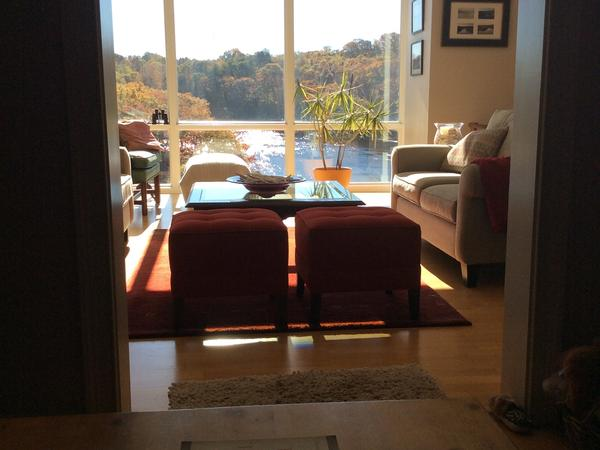 Housesitting assignment in Milton, MA, United States
