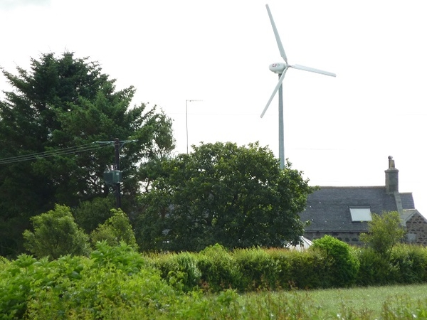 Farm/House Sit in NE Scotland  for Small Tidy Farm,with Turbines & Outdoor Cat Yum-Yum.
