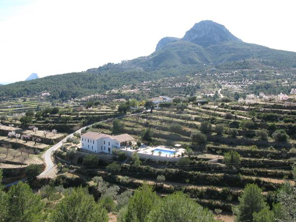 Looking for someone to look after our cats and villa/ apartments near Calpe in peaceful setting