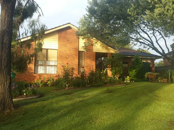 Housesitting assignment in Singleton, New South Wales, Australia