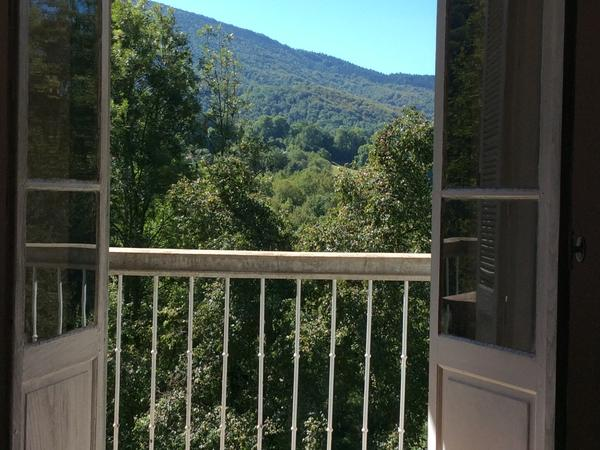 House and Cat sitter in lovely home in the French Pyrenees