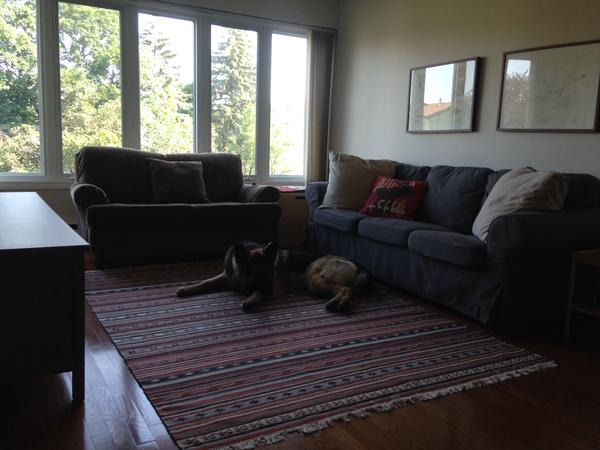 Housesitting assignment in Gloucester, Ontario, Canada