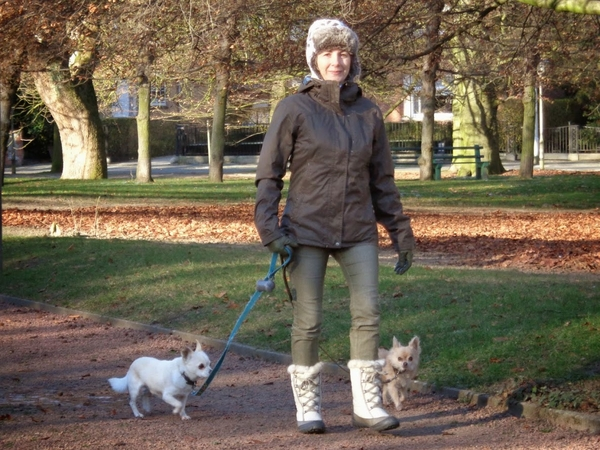Gent - house and pet sitter needed various dates