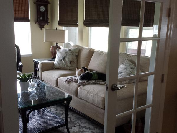Housesitting assignment in Ocala, Florida, United States