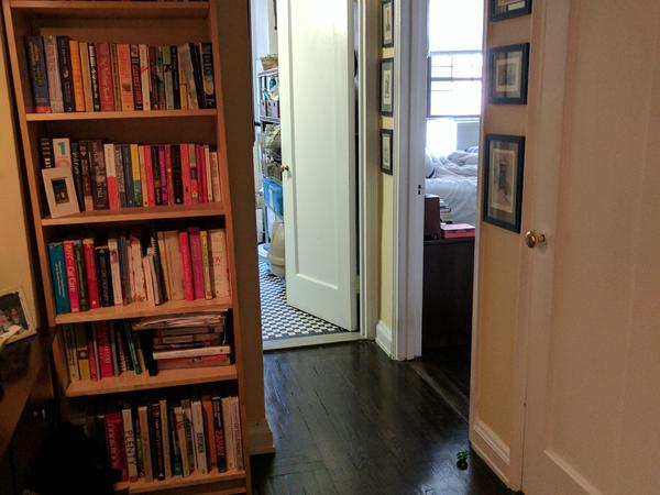 Need cat lover to stay in lovely apartment in Chelsea, NYC for a short trip!