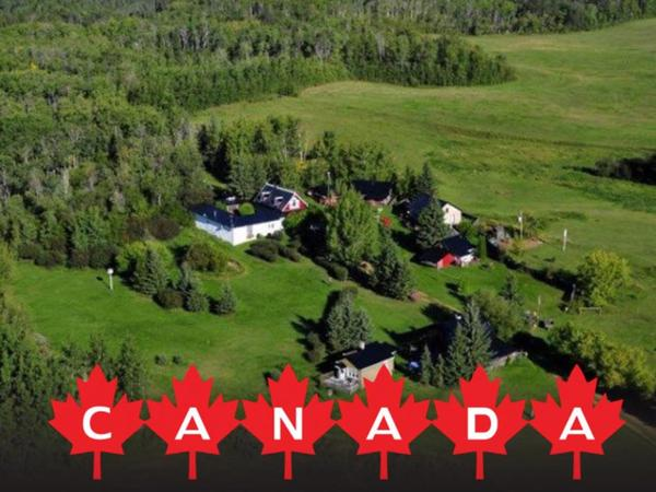 Housesitting assignment in Smoky Lake, Alberta, Canada