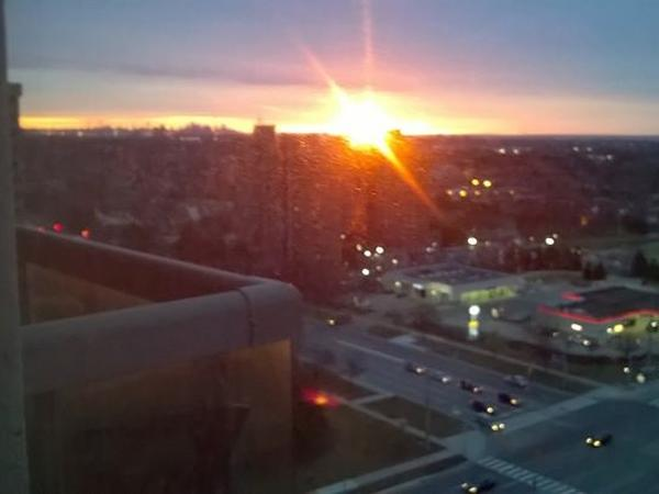 Housesitting assignment in Mississauga, Ontario, Canada