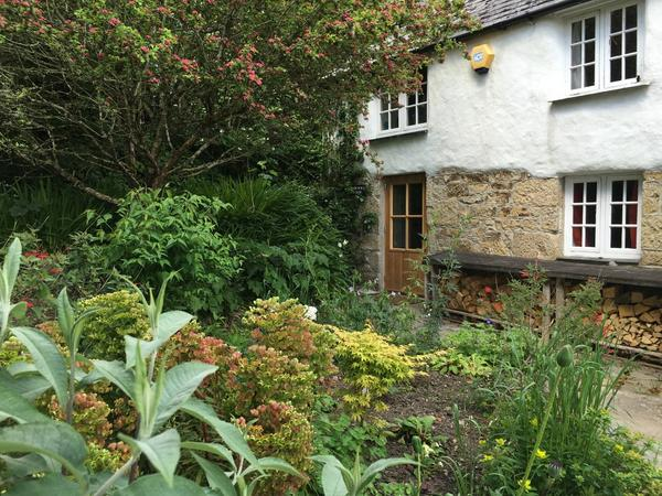 Cosy cob cottage in Cornwall with small menagerie of adorable animals!