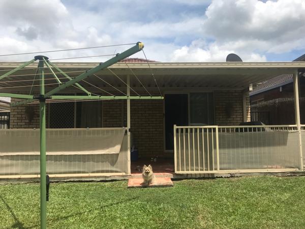 Housesitting assignment in Wacol, Queensland, Australia