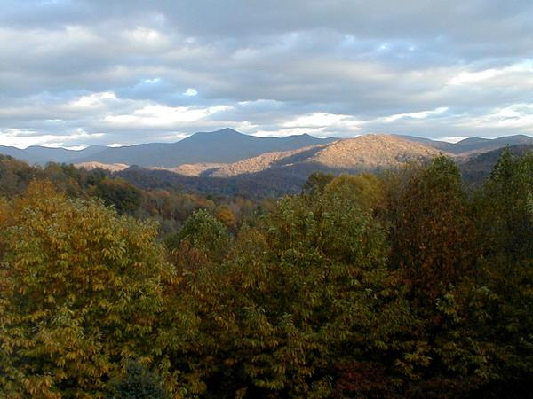 Housesitting assignment in Sylva, NC, United States